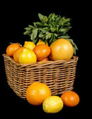 Basket with different fruits in season — Stock Photo