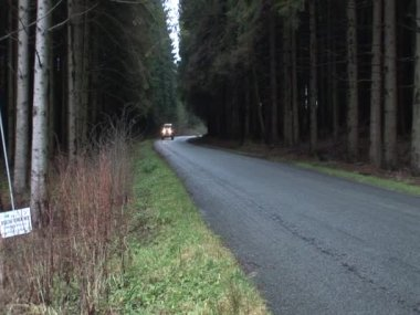 Ww2 truck on Ardennes forest — Stock Video