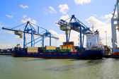 Cargo Port of Rotterdam 011 — Stock Photo