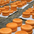 Dutch Gouda cheese market 04 — Stock Photo