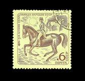 Equestrian sport — Stock Photo