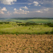 Plowed Field — Stock Photo #41382183