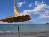 Beach Parasol — Stock Photo