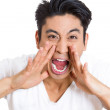 Closeup portrait of angry pissed off irritated guy placing hands to open mouth, screaming, shouting, yelling looking mad angry — Stock Photo