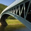 Bigsweir Bridge, a single span iron bridge over the River Wye an — 图库照片