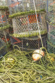 Lobster pots and associated equipment — Photo