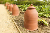 Terracotta rhubarb forcing pots in a row. — Stock Photo
