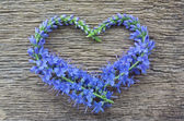 Wild blue flowers in the form of heart on a wooden background — Foto de Stock