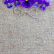 Stock Photo: Purple flowers on canvas