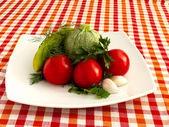 Fresh vegetables on a white plate — Stock Photo