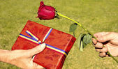 Day of giving a Rose and a Book — Stock Photo
