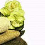 Постер, плакат: Multi nutritional Kale valued in health resorts