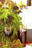 Elderberry Wine and Cordial with the Fruit — Stock Photo