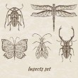 Vector set of abstract insects — Stock Vector