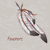 Vector colorful illustration of feathers — Stock Vector