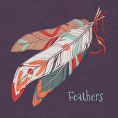 Vector illustration of ethnic decorative feathers — Stock Vector