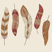 Jeu coloré de plumes différentes vectorielles — Vecteur
