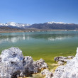 Mono lake — Stock Photo #29933297
