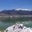 Beautiful Mono lake — Stock Photo #30265261