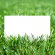 Grass and paper — Stock Photo