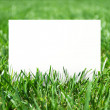 Grass and placard — Stock Photo