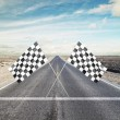 Two Checker Flags Crossed — Stock Photo #42255711
