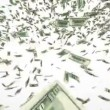 Hundred dollar bills falling — Stock Video