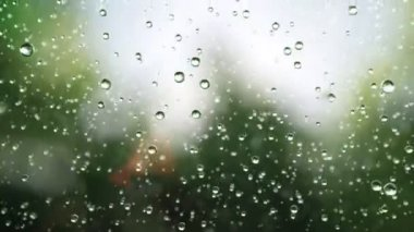 Beautiful rain drops — Video Stock