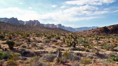 Nevada çölü — Stok video