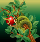 Green snake in apple tree — Stockvektor