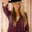 Sultry blond model wearing cowboy hat barnwood background — Stock Photo #40723927