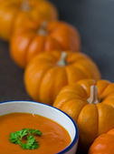 Pumpkin soup and row of pumkins — Stock Photo