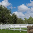 Stock Photo: White picket fence