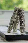 Dry sage sticks — Stock Photo