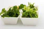 Verdure verdi nel piatto bianco su sfondo bianco — Foto Stock