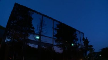 Nature reflection on the building wall — Video Stock