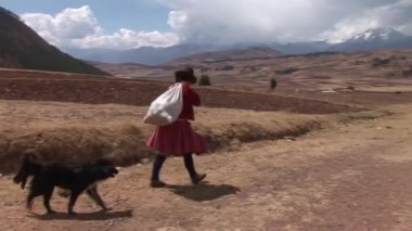 Woman with dog in Peru, South America — Stock Video