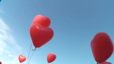 Helium balloons — Stock Video