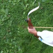 Stock Video: Mpracticing archery