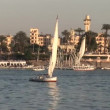 Boats sailing on Nile — Stok Video #37229333