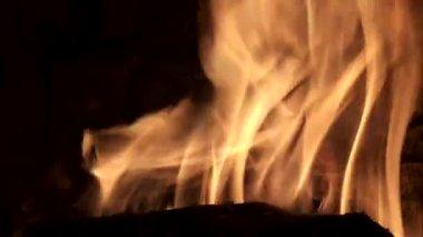 Yanan günlükleri — Stok video