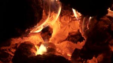 Logs burning — Stock Video