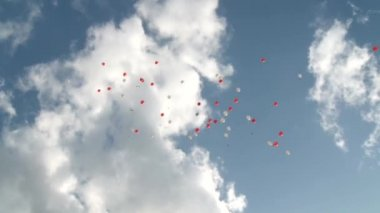 Baloons — Stock Video