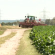 Stock Video: Tractor with plought on field