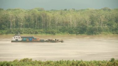 Bulk Carrier on Amazon River — Stock Video