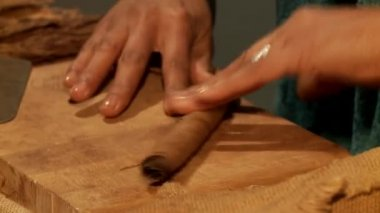 Woman manufacturing cigars — Stock Video