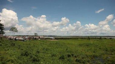 Iquitos landscape, Amazon river, Peru — Stock Video