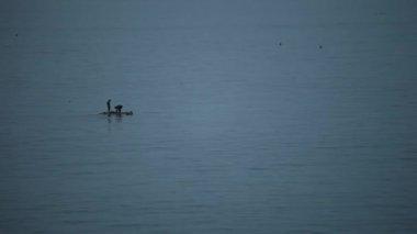 Fishing People — Video Stock
