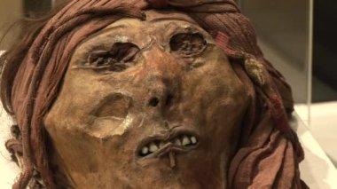 Mummy, South America — Stock Video