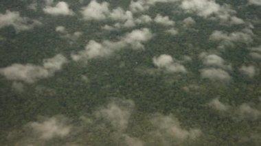 Flying Over Rainforest — ストックビデオ